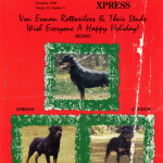 Benno-Amboss-Condor-Cover-Holidays