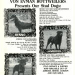 Benno-Amboss-Condor-Presents-Stud-Dogs