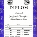 Biyounce National Junghund Champion Certificate