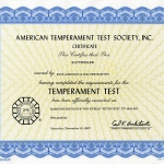 Biyounce Temperament Test Certificate