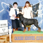 Biyounce Best of Breed & Group 3