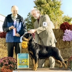 Brook AKC Champion, Best of Opposite