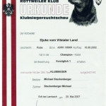 Djuke Austrian Klubsieger Certificate