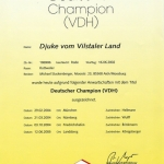 DJUKE Deutsher Champion
