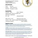 DJUKE-JLPP-REPORT
