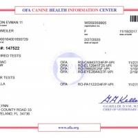 Gina-OFA-All-Tests-22720