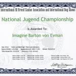 IMAGINE Barton von Evman