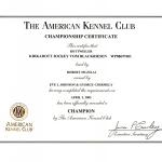 jockey-akc-championship-certificate