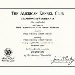 Manet_Cert_CH_American_201012_800