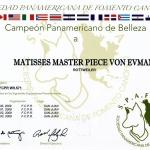 Matisse_Cert_CH_PanAmerican_200905_800