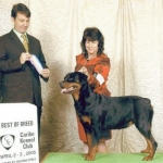 Quantum_Best_Of_Breed_200504_b_c_400