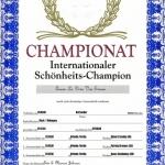 Queenie_Cert_CH_InternationalSchonheits_200610_800