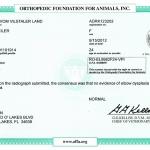 Whitney RO-EL9982F24-VPI – Elbows Clear