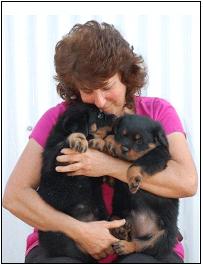 Evie Lynn-Von Evman Rottweilers